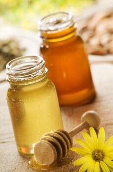 Μέλι σε βάζο 1 κιλού