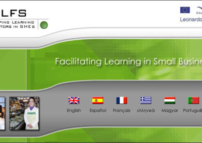 Dlfs: Developing Learning Facilitators in SMEs
